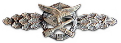 Нагрудный знак «За ближний бой Люфтваффе»